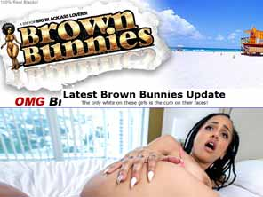 Popular Brown Bunnies Videos